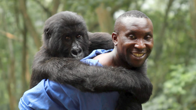 Virunga-Film-640x360